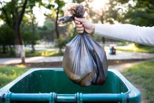 Bins & Garbage Bags